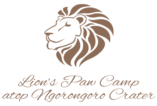 lions-paw-camp