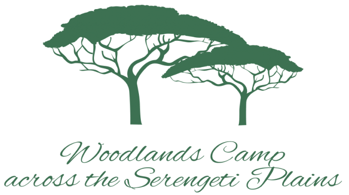 serengeti-woodlands