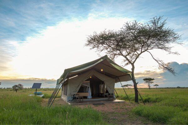 Sametu_Tents_01-min